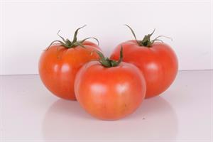 Tomate extra (1 kg)